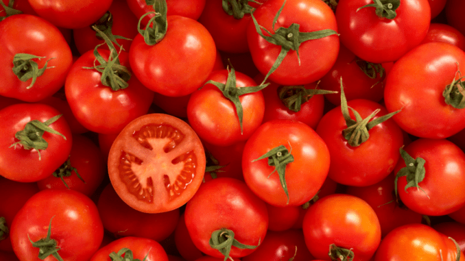Eating tomatoes could help treat fertility problems in men, according to UK scientists.