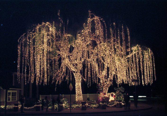 christmas-tradition-ideas-christmas-light-drive