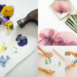 11 DIY Pressed Flower Projects Perfect for Spring