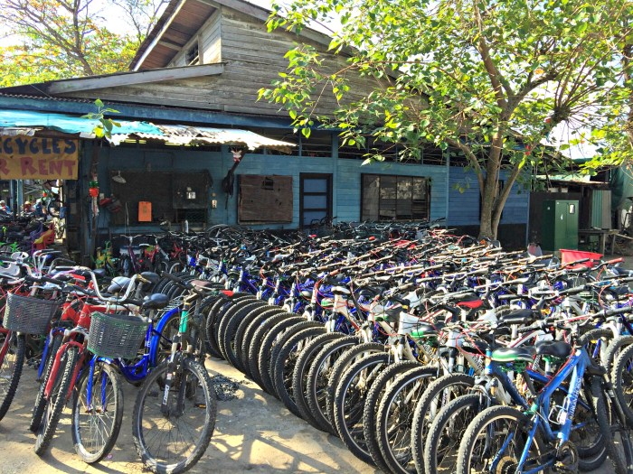 Bicycles in Pulau Ubin