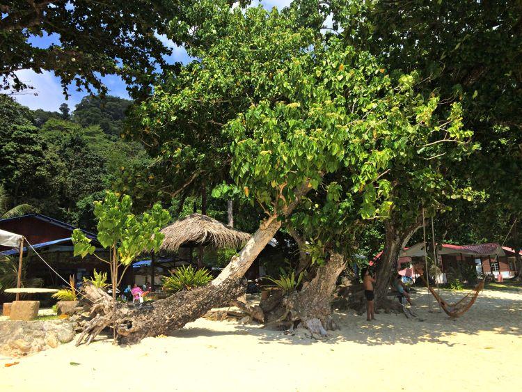 Diving in Malaysia's Pulau Tenggol - www.shewalkstheworld.com