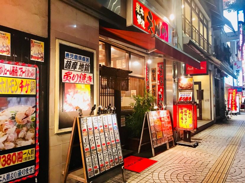 Himeji Night