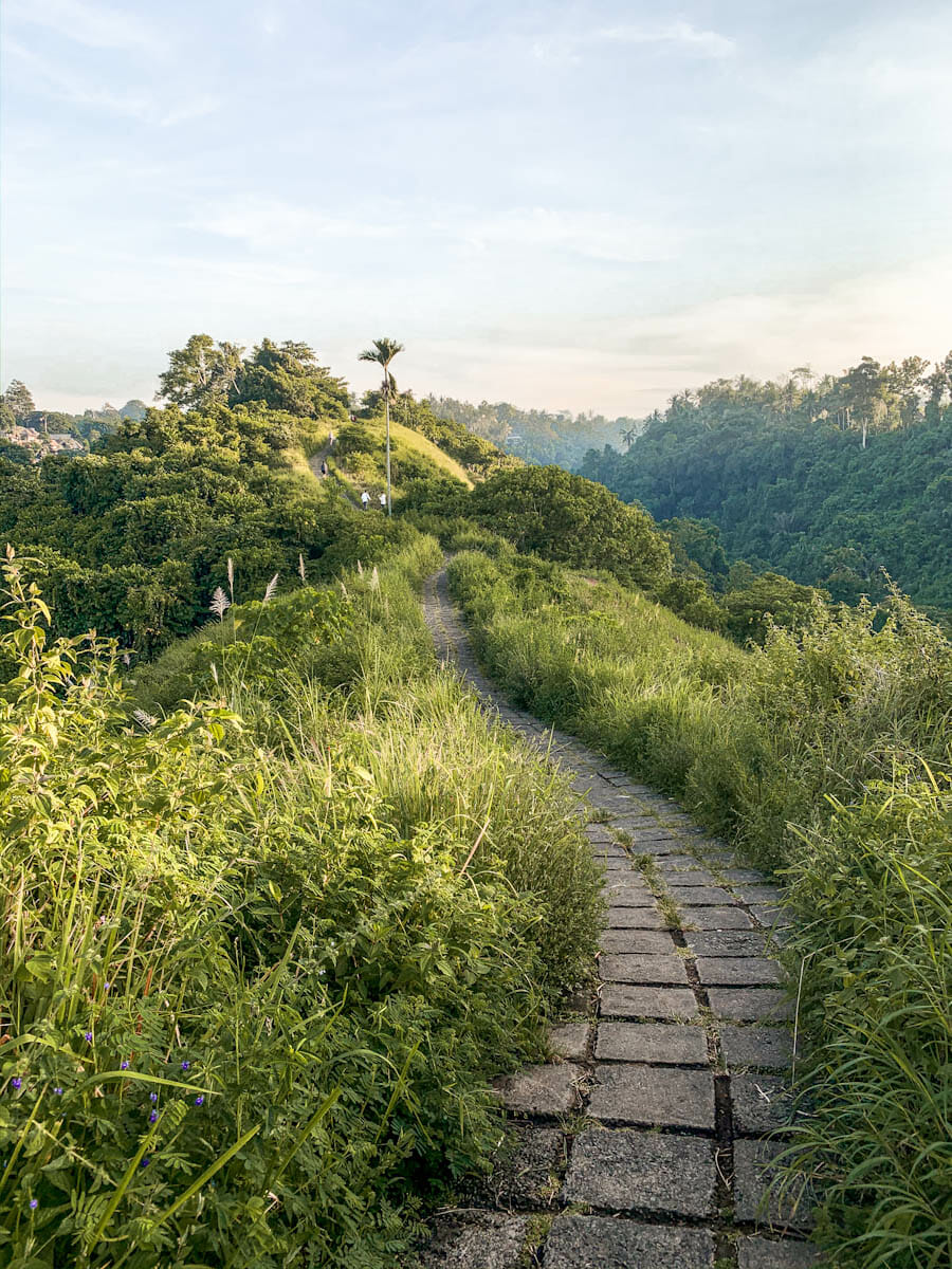 Campuhan Ridge Walk taken with iPhone XS