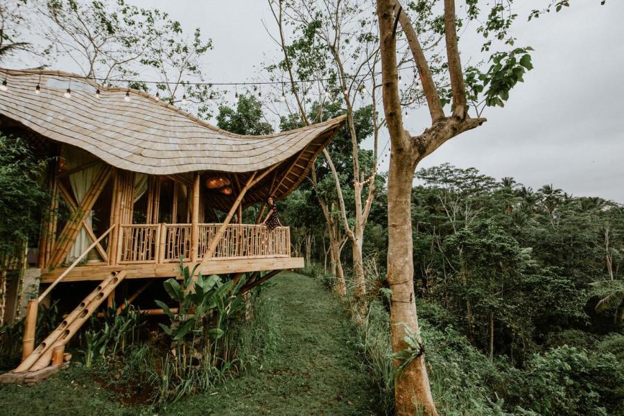 Bird Hills Bamboo House