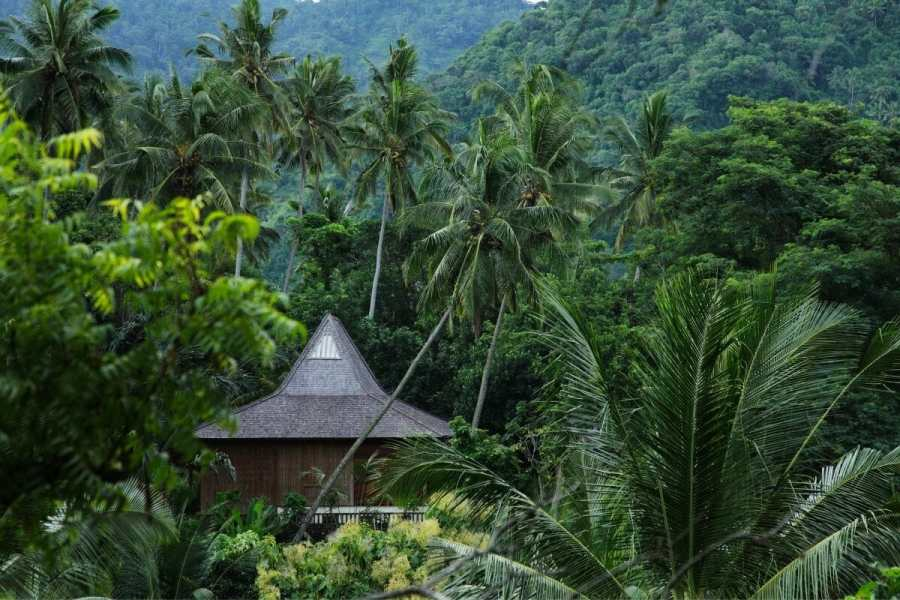 House in the Jungle in Bali, Indonesia