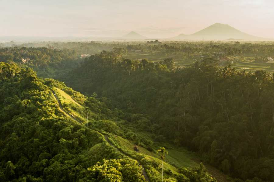 Aerial view of Campuhan Ridge Walk in Ubud, Bali