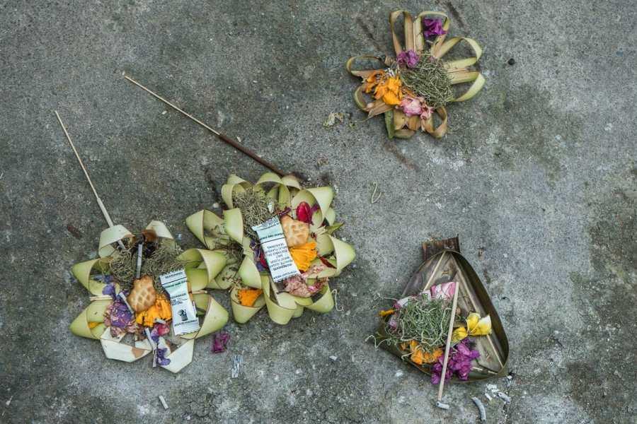 Canang Sari, daily offerings in Bali