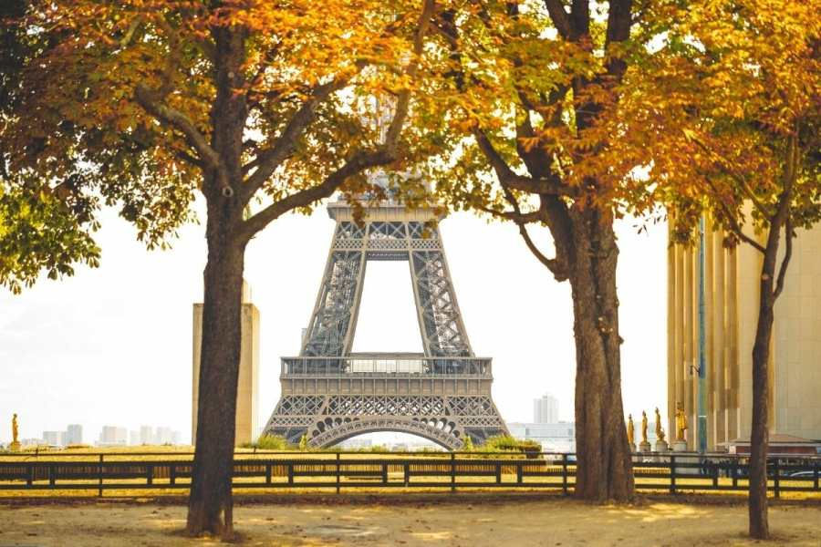 Eiffel Tower in autumn with colorful trees in the foreground