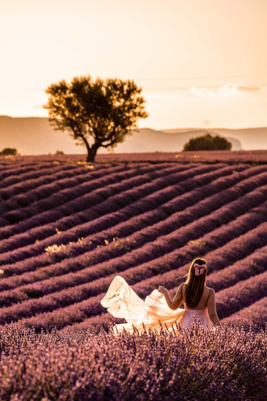 Girl in a pink dress standing in the lavender fields in Provence at sunset
