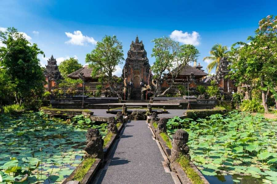 Lotus ponds at Saraswati Temple in Ubud, Bali