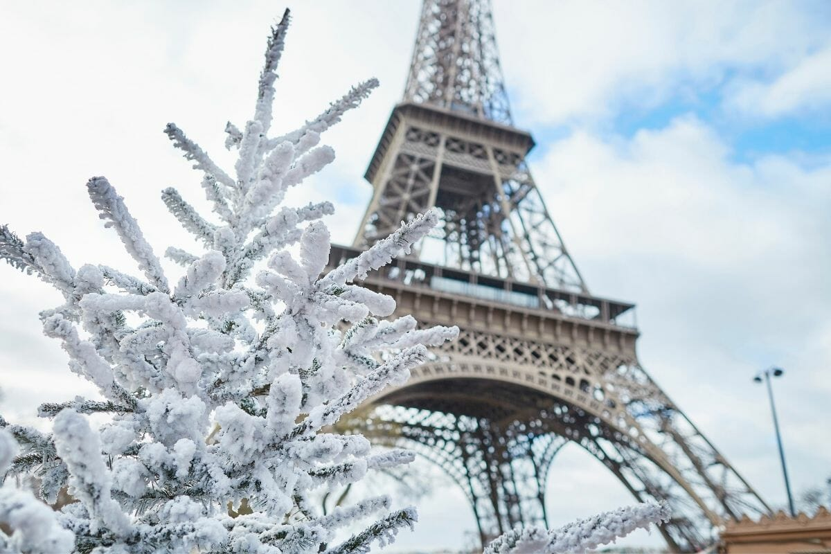 Snowy tree branches in front of the Eiffel Tower in winter