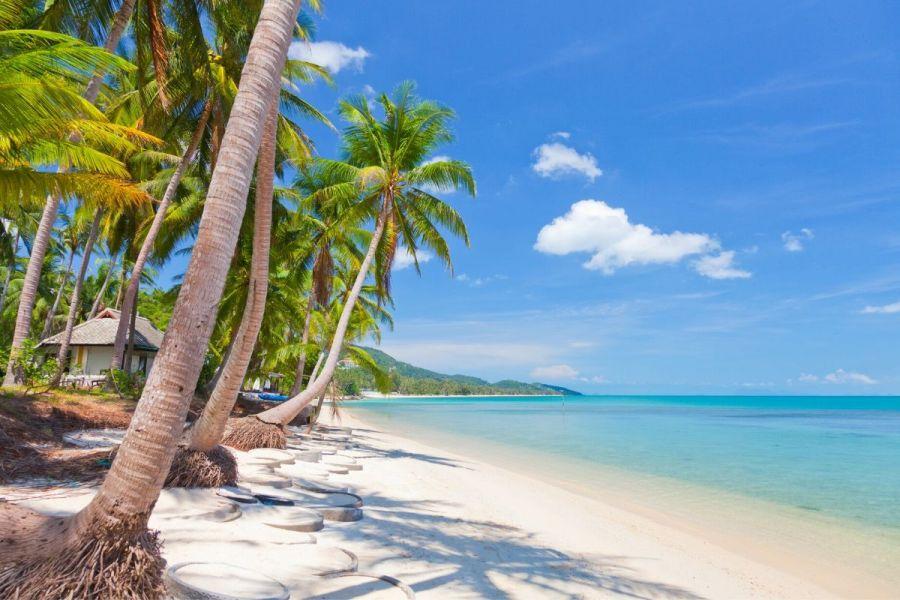 White sandy beach in Koh Samui, Thailand