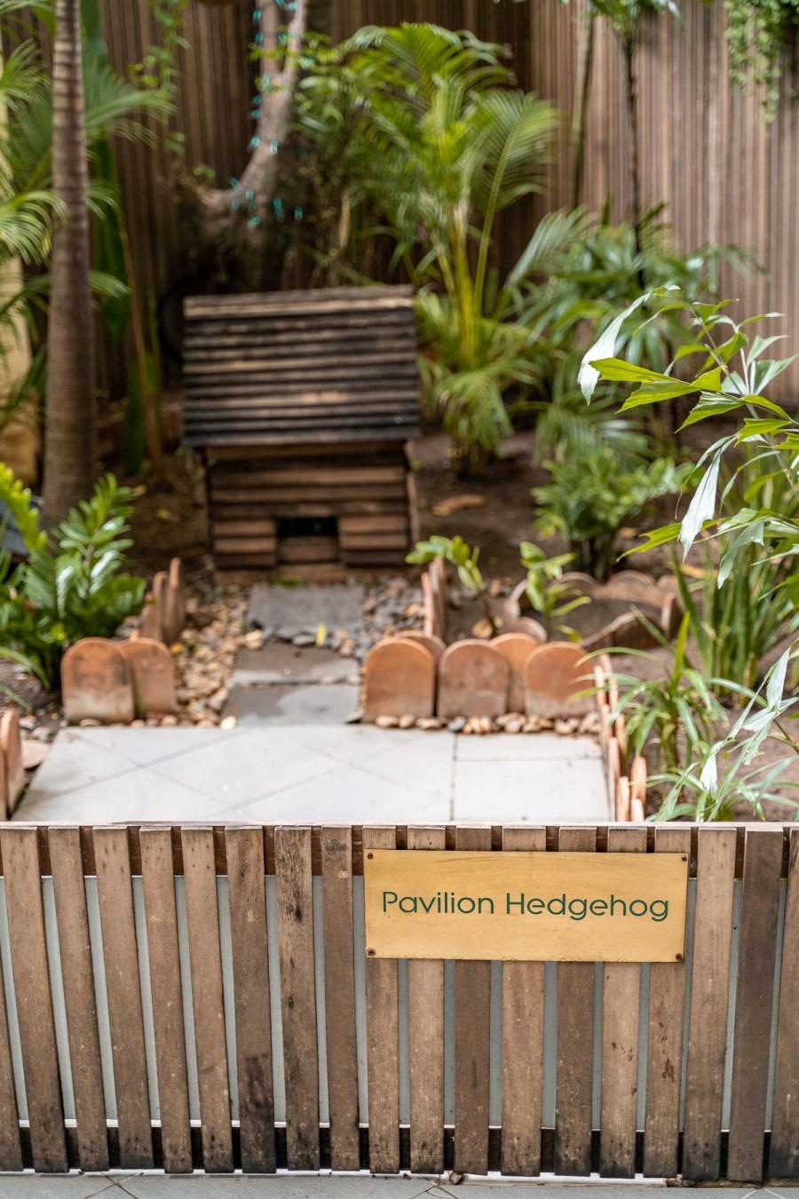 Hedgehog garden at Pavilion Phnom Penh