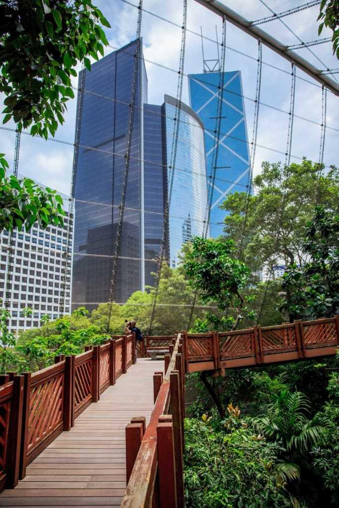 Wooden aviary at Hong Kong Park