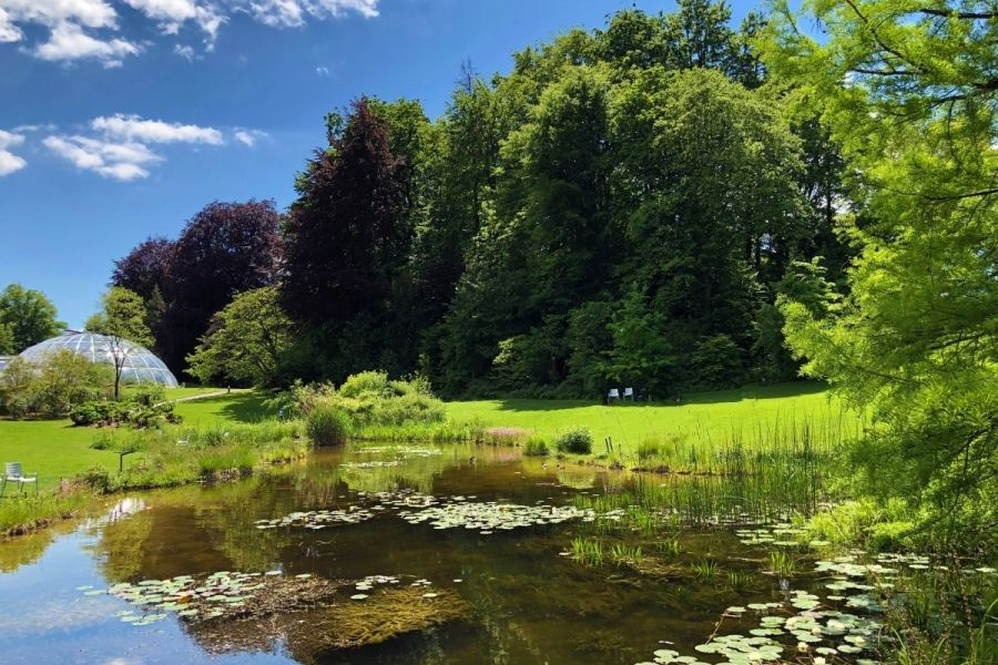 Zurich Botanical Garden