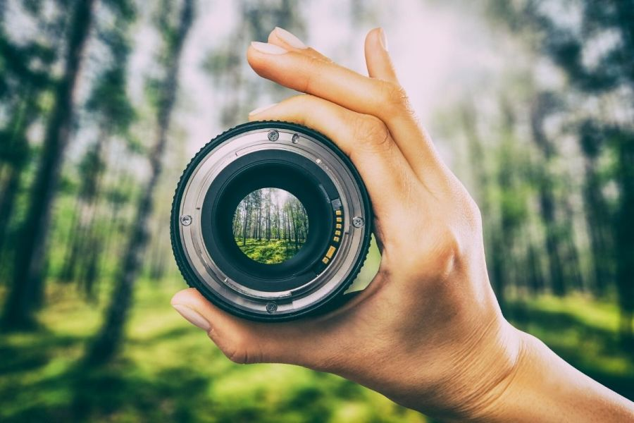 Camera lens in the forest