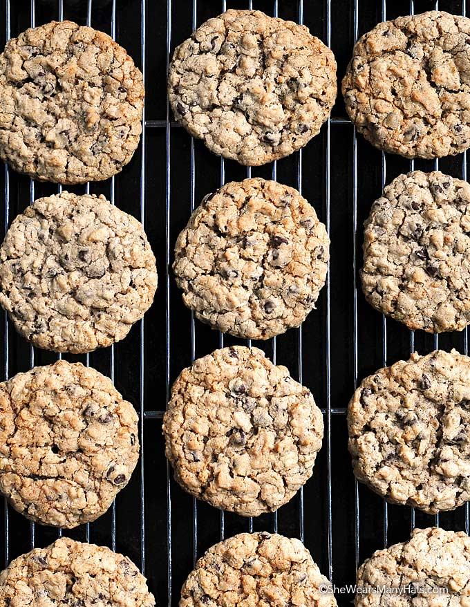 Bake Homemade Oatmeal Chocolate Chip Cookies