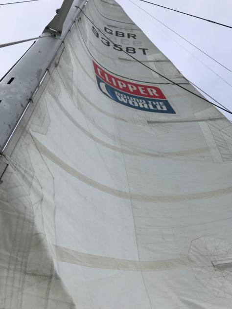 clipper_race_training_cold (2)