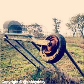 Australiana Zoo - broken bits & background cage