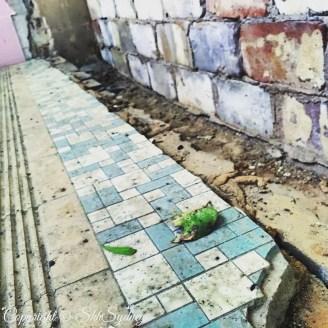 urinal tiles