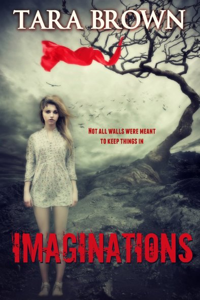 Imaginations by Tara Brown available free for limited time on Kindle