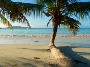 massage hawaien lomi plage cocotier_flickr-vicuna_r