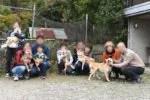 房陽猪ヶ谷庵犬舎のイベントの写真