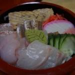 立川の松栄寿司でよだれが出ちゃった柴犬!水槽から出したばかりのアジの刺身が美味すぎる!