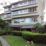 ①伊豆修善寺「絆」に泊まる!客室をウロウロ探索する柴犬まるが可愛い!