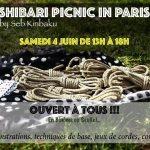 Shibari picnic in paris