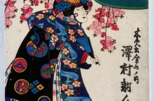 Illustration shibari