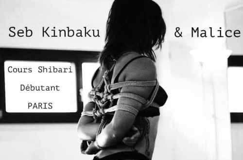 cours shibari mai Paris by seb kinbaku