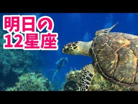 明日の12星座占い: 8/20(火)【山田ケンタウルス】