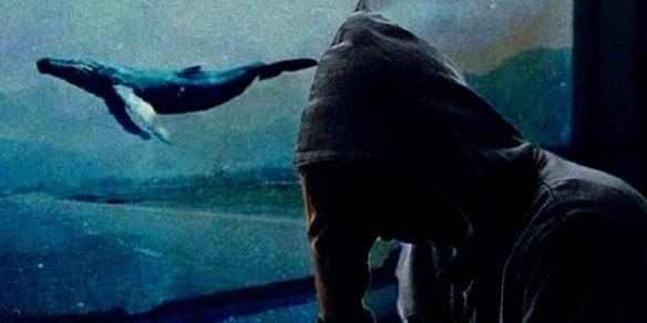 mavi balina