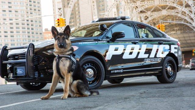 ford sürücüsüz polis aracı projesi sdn 2