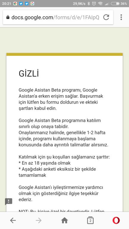 Google asistan beta