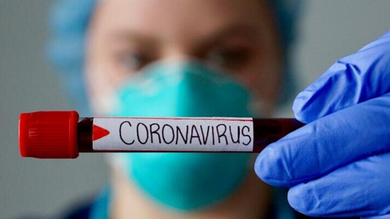 corona-virusu-hucrelere-nasil-bulasiyor-01