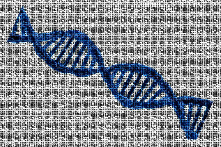 DNA depolama birimi olarak kullanılabilecek