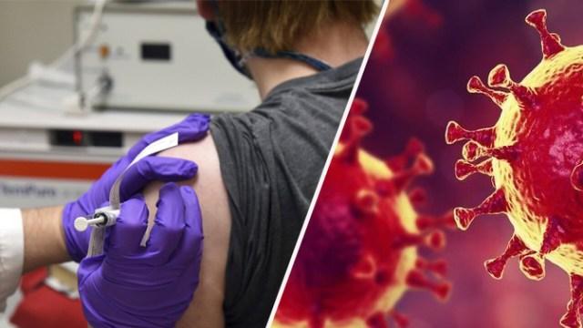 mutasyonlu virüs, koronavirüs, koronavirüs aşısı, biontech aşısı, mutasyonlu virüs nedir