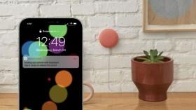 Google Asistan kayıp iPhone'un yerini bulabilecek
