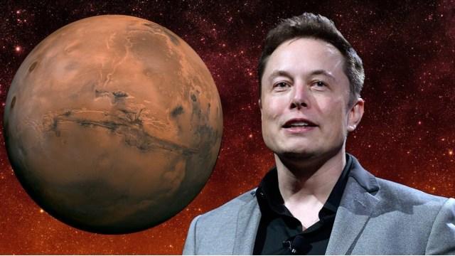 Elon Musk Kehaneti
