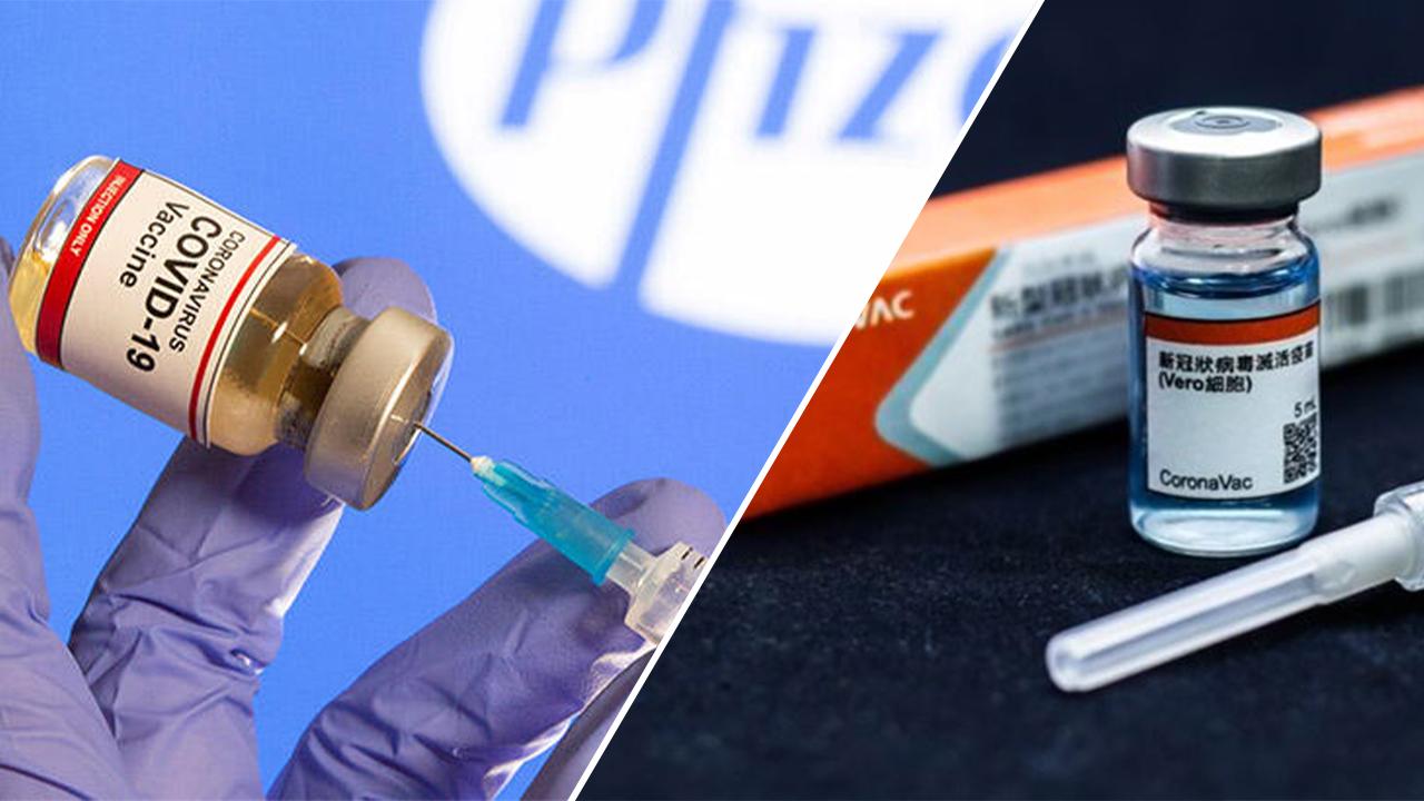 Koronavirüs (COVID-19) aşı verileri