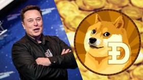 Elon Musk Tweet attı: Dogecoin hareketlendi