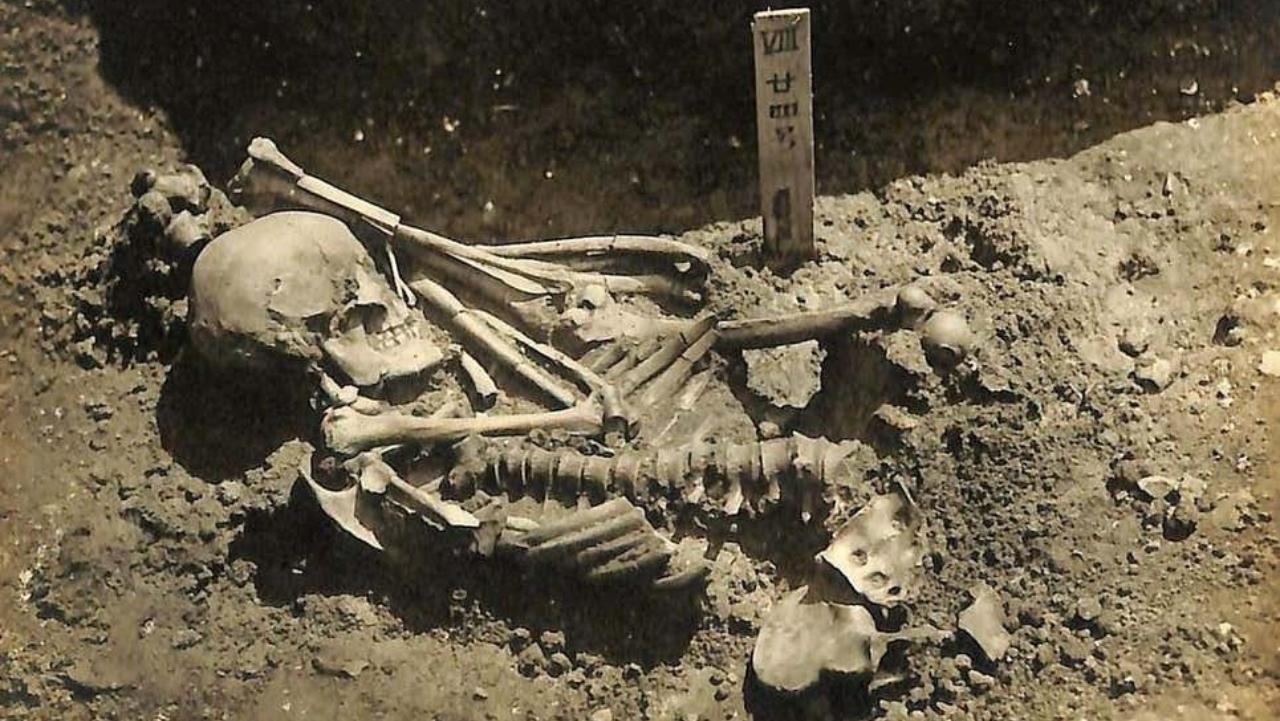 Köpekbalığı tarafından öldürülen 3 bin yıllık insan