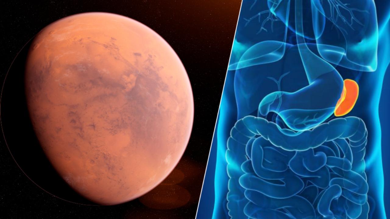 Mars görevleri için yeni öneri dalağın çıkarılması