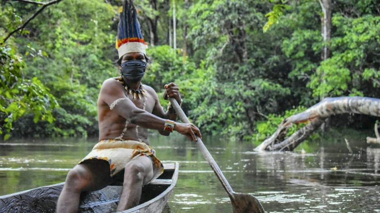 Amazon yağmur ormanları