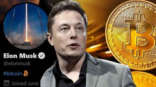Elon Musk kripto varlıklarını açıkladı