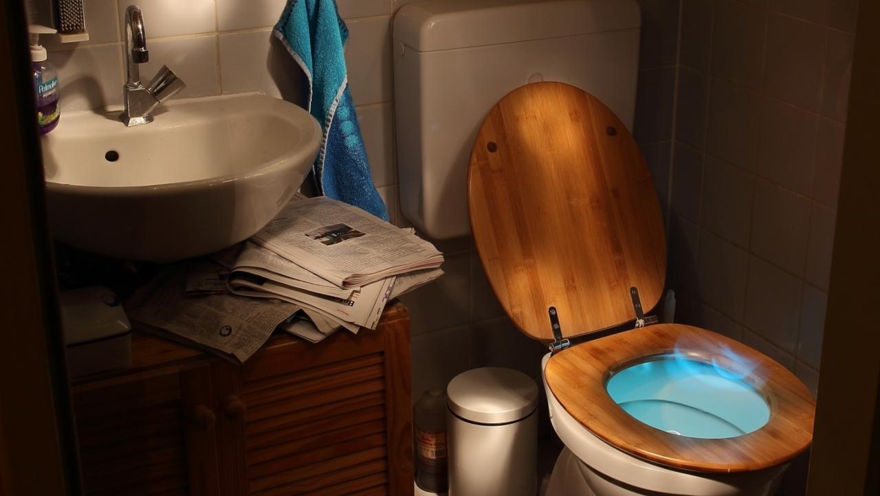 Dışkıyı enerjiye ve sanal paraya dönüştüren tuvalet