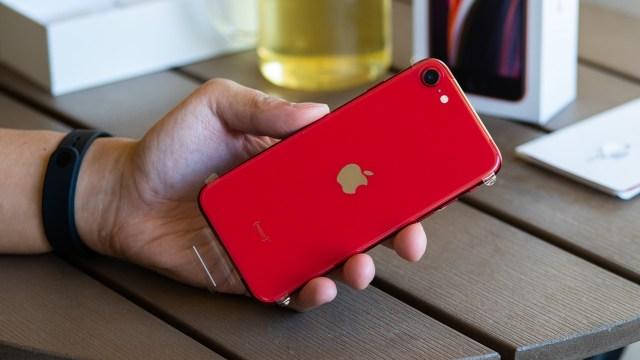 iPhone SE 3 tanıtılacak mı? İşte ilk bilgiler