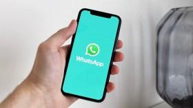 WhatsApp'a yeni özellik geldi: Kaybolma modu